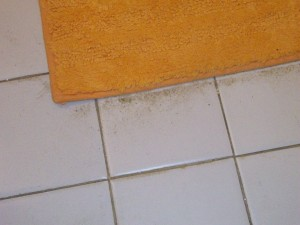 Dirt blown from the carpet into the bathroom by the fans